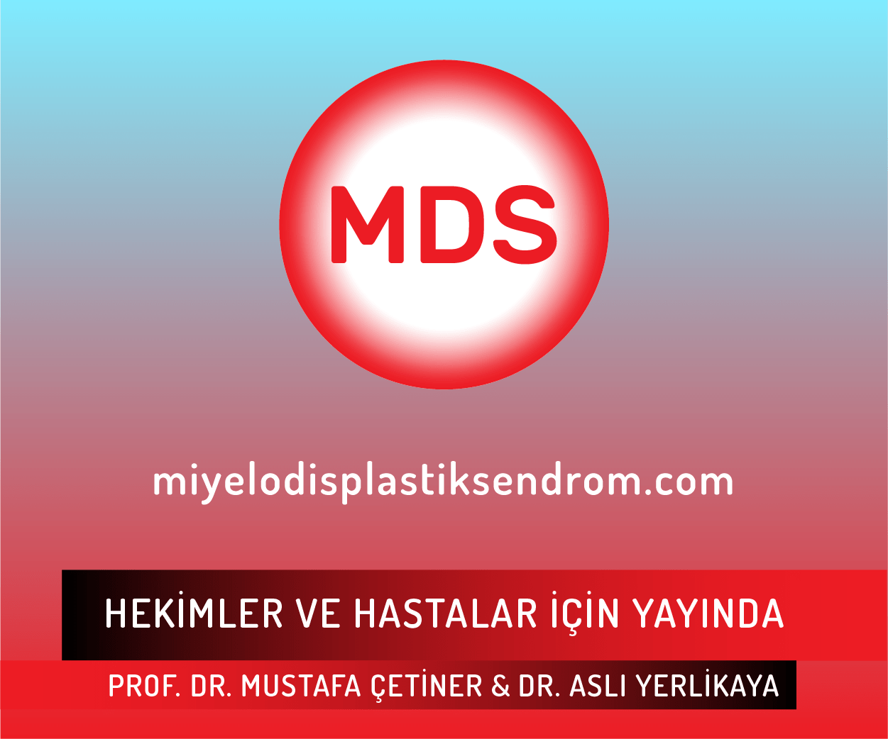 MDS-02.png